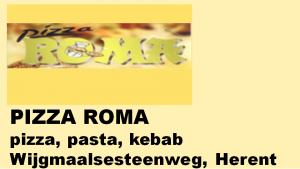 2017-2018 sponsor roma (paneel)